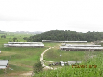 Belize Poultry Association_14