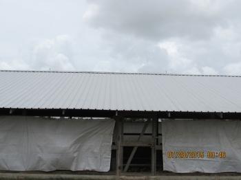 Belize Poultry Association_18