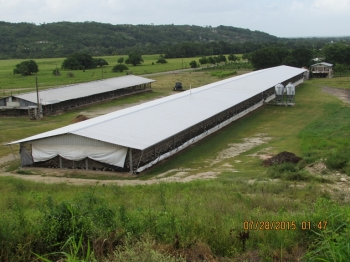 Belize Poultry Association_20